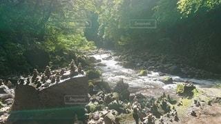 川辺の写真・画像素材[3527861]