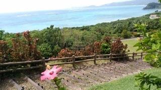 島の風景の写真・画像素材[3527873]