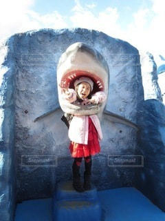 ホオジロザメの写真・画像素材[3637586]