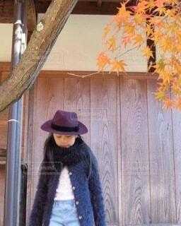 秋の写真・画像素材[3708944]