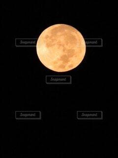 満月!の写真・画像素材[3722261]