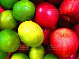 みかんとりんごの写真・画像素材[3828093]
