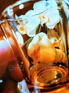 ガラス,手持ち,コップ,人物,グラス,ポートレート,胡蝶蘭,ライフスタイル,手元