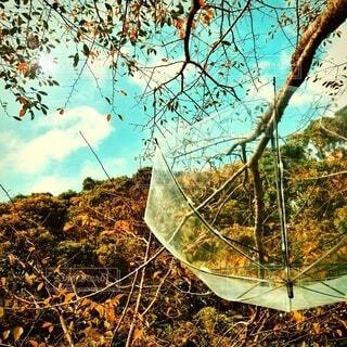 山と傘です。の写真・画像素材[3683897]
