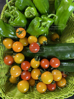 食べ物,野菜,プランター菜園,採れたて野菜