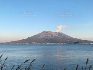 錦江湾越しの桜島の写真・画像素材[3532530]