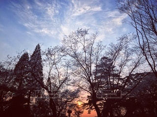 夕焼け空の写真・画像素材[3534980]
