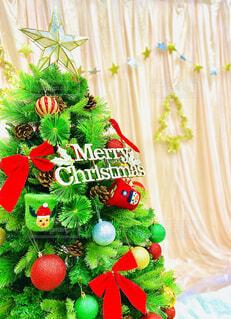 鮮やかなクリスマスツリーの写真・画像素材[3981482]