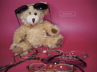 クマと眼鏡の写真・画像素材[3681778]