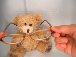 クマに眼鏡の写真・画像素材[3681855]