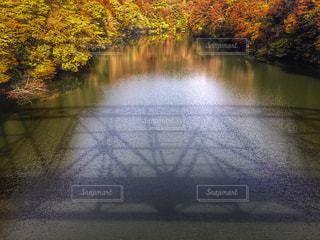 秋の写真・画像素材[248583]