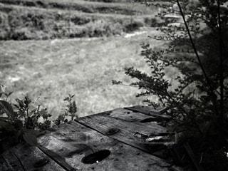 忘れられた机の写真・画像素材[817308]
