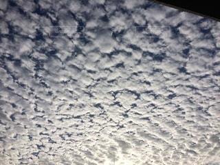 鰯雲の写真・画像素材[3575473]