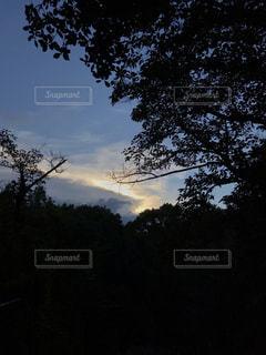 光明の写真・画像素材[3608882]