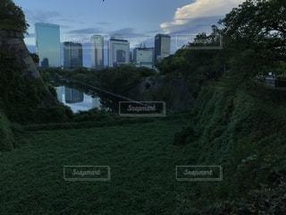 草原の向こうの高層ビルの写真・画像素材[3608879]