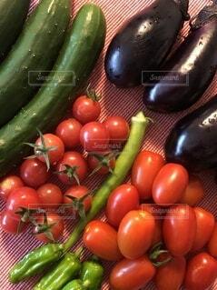食べ物,野菜,ミニトマト,食品,オクラ,食材,茄子,夏野菜,フレッシュ,生野菜,ベジタブル,自家栽培,きゅうり,ししとう,とれたて野菜
