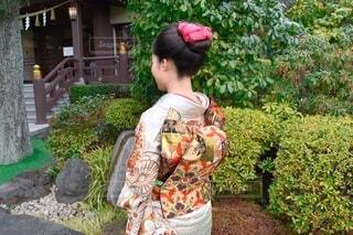 風景,屋外,樹木,着物,イベント,和服,お祝い,晴れ着,振袖,成人式,和装,草木,行事,成人の日