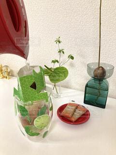 コーヒー,花瓶,植木鉢,ティータイム,観葉植物