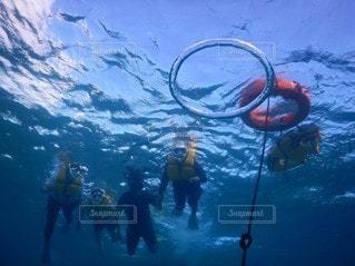 水浮き輪の写真・画像素材[3562501]