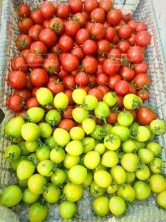 食べ物,自然,風景,枝,野菜,食品,食材,フレッシュ,ベジタブル,販売
