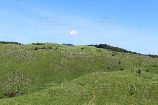 緑豊かな丘の中腹の近くの写真・画像素材[3563068]