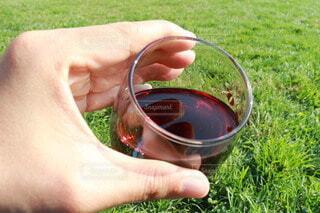 芝生,屋外,緑,草,手持ち,人物,人,ワイン,ポートレート,ライフスタイル,赤ワイン,ワイナリー,手元,テイスティング