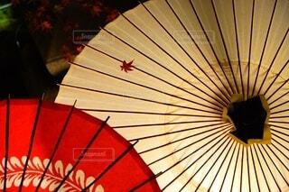 ライトアップされた傘の写真・画像素材[3710197]
