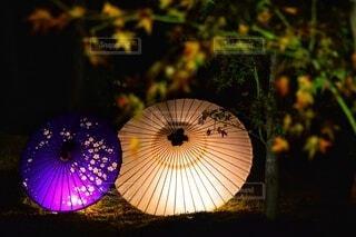 ライトアップされた傘の写真・画像素材[3710194]