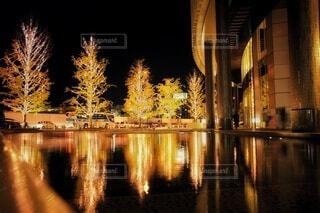 建物,秋,冬,夜,屋外,大阪,デートスポット,光,樹木,イルミネーション,都会,キラキラ,クリスマス,明るい,デート,グランフロント,縦,グランフロント大阪,グランフロントクリスマス