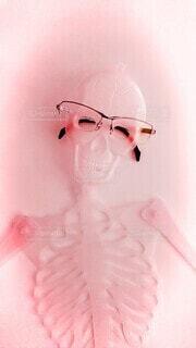 笑顔のピンク骨〰️キンの写真・画像素材[3652365]