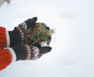 赤いニットと手ぶくろで雪遊びの写真・画像素材[4115831]