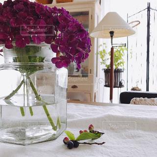 インテリア,花,アンティーク,リビングルーム,アジサイ,庭先紫陽花