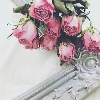 近くの花のアップの写真・画像素材[770633]