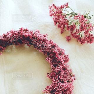 ピンクの花のグループの写真・画像素材[770641]