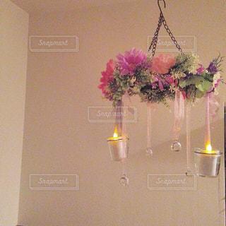 近くの花のアップ - No.807766