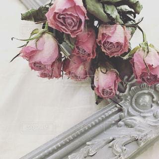 近くの花のアップの写真・画像素材[852155]