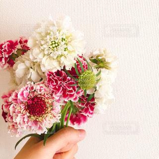 花の花束 - No.936156