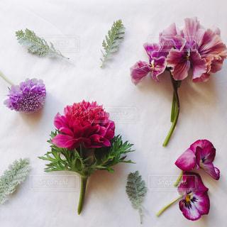 紫の花で満ちている白い花瓶の写真・画像素材[936161]