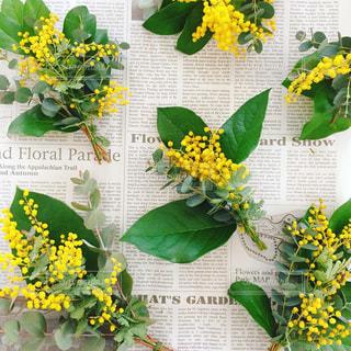 花,春,花束,ミモザ,フラワーアレンジ,ユーカリ,スワッグ