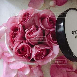 花,ピンク,フラワー,バラ,rose,ピンク色,桃色,pink,ギフト,ガーリー