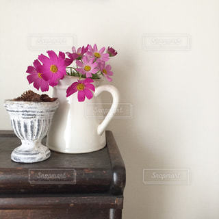 紫の花で満ちている白い花瓶の写真・画像素材[1455249]