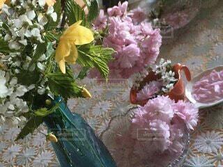 春の訪れの写真・画像素材[4167951]