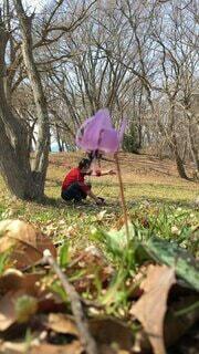 お花のパラソルの写真・画像素材[4214395]