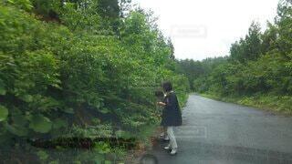 主婦の散歩は…。の写真・画像素材[4214394]