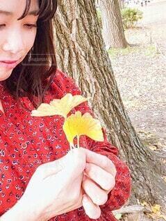 秋,赤,かわいい,黄色,女,手持ち,人物,イチョウ,銀杏,ポートレート,ライフスタイル,手元