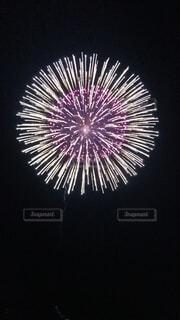 きれいな花火の写真・画像素材[3670327]