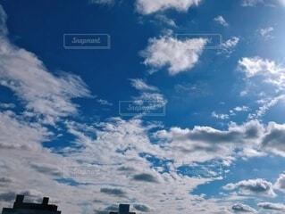 青空広がる。の写真・画像素材[3786469]