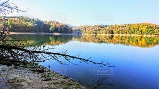 木々に囲まれた湖の写真・画像素材[3754957]