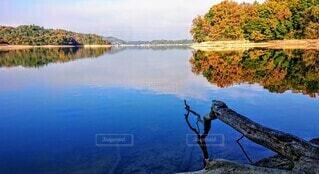 木々に囲まれた湖の写真・画像素材[3754956]