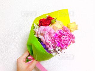 花,ピンク,赤,花束,カラフル,バラ,お花,プレゼント,手持ち,めでたい,人物,お祝い,ポートレート,赤色,華やか,卒業,母の日,入学,ありがとう,おめでとう,ライフスタイル,ほんのり,暖色,父の日,手元,感謝,御礼,門出,祝福,気持ち,敬老の日,お礼,お祝い事,礼,感謝の日